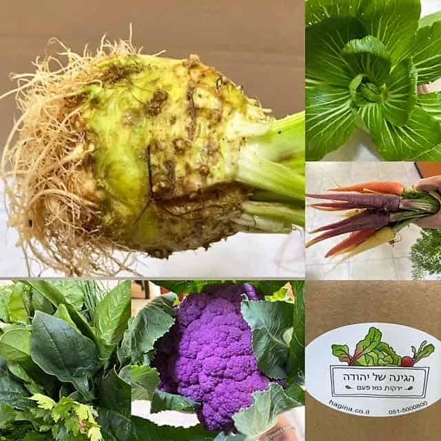 ירקות אורגניים למרק